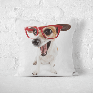 Poduszka - DOG WITH RED GLASSES ON